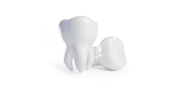 3d dental imaging fort collins co