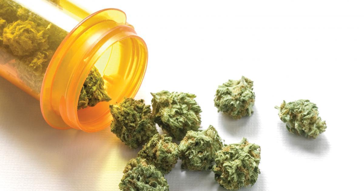 The types of effect of marijuana plant